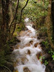 Going down (Cris_Pliego) Tags: tongariro newzealand nature cloudy mountains volcano tongarirocrossing waterfall trail trek lakes bluelake nationalpark mangatepopovalley emeraldlakes roadtrip backpacking travel ngarotopounamu mordor taupo