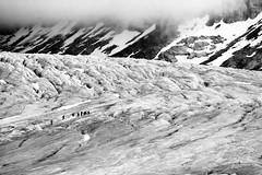 The Glacier (adamdera) Tags: rhoneglacier europe switzerland mountains alps glacier hike bw canonef70300mmf456isusm canon telephoto landscape rock ice