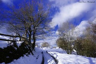 Caminos nevados de Asturias.