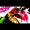BLEEDING HEARTS (thekingofslop) Tags: impressionism escapism surrealism slopart popart apparel home art tech design floral flower flowers seecolors colors slices nature natureslices thekingofslop kingofslop graywaterthekingofslop hearts bleeding bleedinghearts
