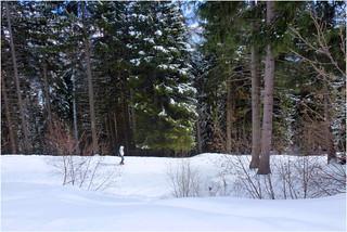 Grano - A spasso nel bosco