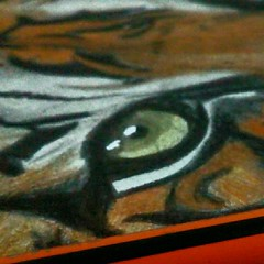 tiger (herneysartista) Tags: eyes alma puerta colores magicolor prismacolor fabercastell dibujosenventa forsale sevende santiagodecali calico newyork shanghai china japan australia millionary objetodedeseo objetodelujo luxury composición drawers drawingart draw drawing color diseño industria instagram art realistic realismo hiperrealismo real habilidad talento talent milenians miami men objeto colección colombia gusto deseo pulso equilibrio amarillo naturaleza nature macro landscape animalito animalplanet animal salvaje fauna felino mirada dubai asia