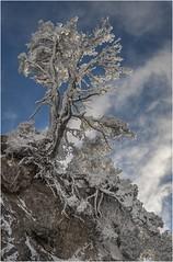 Larra-Belagua013 (Fermin Ezcurdia) Tags: larra belagua navarra pirineo nieve pyrenees esquinordico arlasarette anie