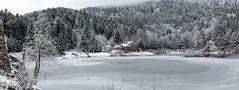 18022018-IMG_1645 (Steffan Photos) Tags: randonnée raquettes neige alsace vosges haut rhin rouge gazon gresson ferme auberge oberbruck grandest france fr
