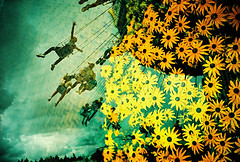 Lomo – look mum no hands (lomomowlem) Tags: 35mm analogue carousel crossprocess colourstreambrighton clouds doubleexposure expiredfilm flowers kodakelitechrome lomo lomography lca multipleexposure mxbutton xprocess xpro paultonspark funfair amusementpark