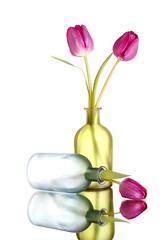 Tulips (Karen_Chappell) Tags: flower floral tulip white glass blue green pink tulips stilllife reflection bottles vase bottle vases pastel