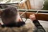 Piper L4 Cub Restoration (Benjamin Ballande) Tags: piper l4 cub restoration