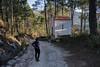 Hiking (Miguel.Galvão) Tags: cabeça da velha seia gouveia covilhã portugal serra estrela galvão miguel pedro pires nature natureza trees árvores