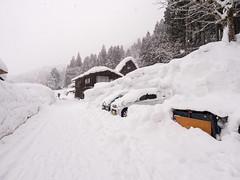 P1011348 (Rambalac) Tags: asia japan lumixgh5 forest snow water азия япония вода лес снег