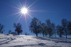 Cold sun (Baubec Izzet) Tags: baubecizzet pentax landscape winter snow sun trees