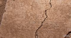 Nimrud Palace (2).jpg (tobeytravels) Tags: assyrian palace kalhu calah levekh zigararat lamassu throneroom shalmaneser ashurnasirpal layard stele nabu enli unesco