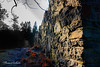 Ruin (Thomas Karlsson Photos) Tags: ruin castle stones borg slott uddevalla grafitti now then old mayham