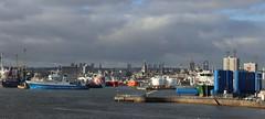 Aberdeen Harbour_feb 18_14 (Alan Longmuir.) Tags: grampian aberdeen greyhoperoad aberdeenharbour