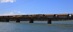 6001 6007 and 6004 roll over the Hunter River with loaded WG284 from Wilpinjong Coalliery (bukk05) Tags: 6001 railpage:class=88 railpage:loco=6001 rpauqld6000class rpauqld6000class6001 6007 6000class 6004 wg284 wilpinjong wilpinjongcoalliery wagons qrn qrnational explore export engine railway railroad railpage rp3 rail railwaystation railwaystations train tracks tamron tamron16300 trains river photograph photo loco locomotive horsepower hp ge ge7fdl16 hunter hunterriver flickr freight diesel station standardgauge sg spring water australia artc aurizon aurizoncoal 2017 canon60d canon coal coaltrain nsw newsouthwales newcastle cityofnewcastle c44aci mainline sandgate