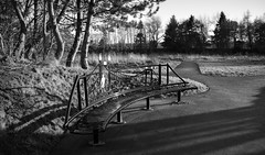 Lovely park bench at Dorrator Bridge, Larbert (picsbyCaroline) Tags: park bench seat public