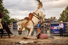 Walcha Rodeo 6. (jasoncstarr) Tags: rodeo walcha nsw cowboy cowgirl cow buckingbronc bronc bull bullriding steerwrestling ropeandtie roping canon canoneos6d 70200mm tamron70200mmf28lens sport clowns