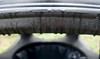 Rain on the bin 50/365 (4) (♔ Georgie R) Tags: rain bin