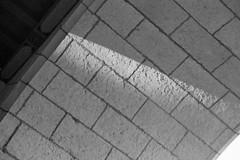 Courthouse Sandstone Detail (Ian E. Abbott) Tags: santabarbaracountycourthouse santabarbaracounty santabarbara courthouse court southerncalifornia socal sandstone stone texture lightandshadow leicaiiif 50mmf2summitar 50mm summitarilford xp2ilfordxp2black white filmblack whiteblack whitebw film