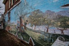 2018 - photo 052 of 365 - some wonderful planned grafitti art (old_hippy1948) Tags: art grafitti wall decoration alley