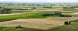 View from the Ijzertoren Diksmuide