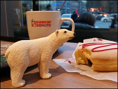 Day 13 (kostolany244) Tags: 3652018 onemonth2018 january day13 1312018 kostolany244 samsunggalaxys5 europe germany geo:country=germany month icebear donuts food 365the2018edition