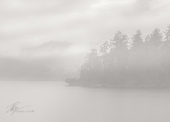 Pacific Mist and Heavy Rain | January 2018 (pklopper) Tags: rain mist coastal mountain island blackandwhite minimalism simple highkey petrusklopper vancouverisland nikon pk1photos explorebc photography longexposure