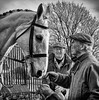 Old friends (Nanooki ʕ•́ᴥ•̀ʔっ) Tags: friends meet people horse hounds mono blackwhite nik silverefexpro country tradition boxingday kennels petworth petworthpark nationaltrust