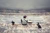 Cormorant fisher (marco_catullo) Tags: cormorant fisher china people gente cormoran rio pescador descanso res