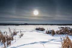Cold weather (googling2000g) Tags: sturgeoncounty alberta winter snow greenspace lois hole