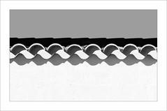 La teulada / The roof. (ximo rosell) Tags: ximorosell bn blackandwhite blancoynegro bw buildings llum luz light llums arquitectura architecture abstract abstracció algemesi minimal nikon d750 detall