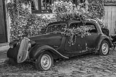 20180108-191350 (carlosgera) Tags: citroen car auto old colonia coloniadelsacramento uruguay