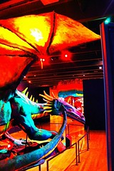 Dragon's Tale (PhotoJester40) Tags: indoors inside dragon structure exhibit amdphotographer