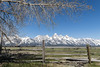 Framed beauty (Picardo2009) Tags: barn grandtetonnationalpark mormonrow usa wyoming granero montaña mountain mountainrange mountains landscape travel outdoors nature picoftheday hiking trekking praire nationalpark