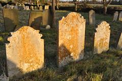 Afternoon sun on and around Mutford Church, Suffolk (series) (Kirkleyjohn) Tags: church churchexterior churchyard suffolk roundtowerchurch roundtower saxon flint flinttower flintwalls gravestone