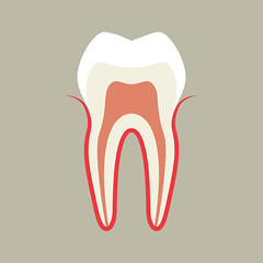 Dentist in South Concord, NC (Clifford C. Compton III DDS, PA) Tags: tooth toothache teeth stomatology dent dental dentist health healthcare illness pain crown enamel pulp gums patient anatomy background care caries pulpitis anxiety periodontitis concept biology doctor root sick exhaustion healthy human hygiene medical medicine grief molar mouth body illustration symbol graphic sign line vector white