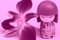 Mitsuko (Chandana Witharanage) Tags: srilanka southasia pearloftheindianocean macromondays monochrome mitsuko kimmidoll flower orchidflower tabletop canoneos7d ef100mmf28lmacroisusm chandanawitharanagephotography creativephotography 7dwf wednesdaysmacroorcloseup