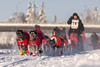 Team Bernhard Schuchert (Markus Trienke) Tags: fairbanks alaska usa us dog dogs race yukonquest 2018 sleddog dogsledding mushing winter snow ice cold husky