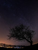 winter-nights_1 (stephfab) Tags: voie lactée étoiles