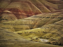 The Painted Hills of Oregon, on a cloudy day. (Ruby 2417) Tags: yellow geology hills volcanic oregon scenery nature