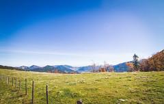 (c) Wolfgang Pfleger-8445 (wolfgangp_vienna) Tags: niederösterreich loweraustria austria österreich schneeberg schneebergland herbst autumn colorful bunt wald wiese blue blau blauerhimmel