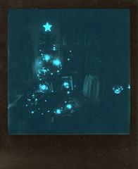 Blue Christmas (Magnus Bergström) Tags: polaroid 680 slr polaroid680slr analog instant film 600 foldable originals polaroidoriginals duochrome black blue blackandblue portrait woman girl sweden sverige värmland wermland ekshärad kyrkheden christmas tree star lights pine livingroom dark idanil00