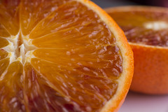 Cold weather calls for some citrus (herecomesanothersongaboutmexico) Tags: fruit food citrus oranges rubytangos closeup macro