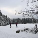 Harz-Oderbrueck_e-m10_1012053834 thumbnail