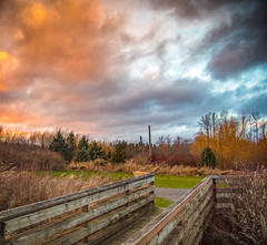 Be filled with wonder, Be touched by peace (pooja.anoop) Tags: bellevue phantomlake washington explorewashstate explorewashington nikon nikonusa nikond750 nikonphotogaphy washingtonparks lakehillsgreenbeltpark duskphotography colorsofsky orangesky greysky peace nature naturephotography