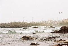 Lambert's Bay (Semjaja) Tags: lambertsbay seascape ocean wave rocks nikonf90x nikon afnikkor28105mmd354d kodakportra160 portra portra160 kodak 35mm 35mmcamera slr film filmlives filmsnotdead ishootfilm ilovefilm southafrica