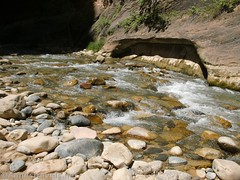 The Virgin River below the Narrows (Annes Travels) Tags: zionnationalpark utah zionnarrows canyon virginriver desert