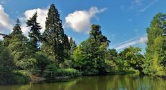 """Green"" (standhisround) Tags: trees tree gardens kewgardens royalbotanicalgardens rbg kew london summer uk england nature lake reflections sky green"