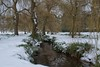 More Snow! (Tilney Gardner) Tags: snow ice bournemouth poole bournemouthgardens dorset nikon landscape