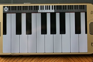 45/117 A Musical Instrument