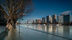 Reflet (l.pigault) Tags: seine crue nikon eau d800 fleuve paysage aprèsmidi pauselongue paris 1835f3545 5m48